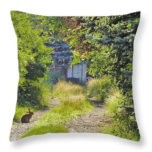 Rabbit Throw Pillow featuring the photograph Peaceful Morning by Scott Moss