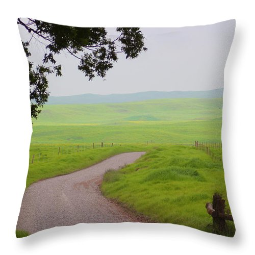 Peaceful Passage Throw Pillow featuring the photograph Peaceful Passage by Kimberly Reeves