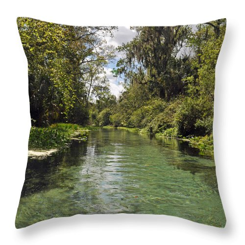 Florida Throw Pillow featuring the photograph Peaceful Spring by Deborah Good