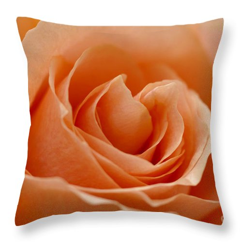 Peach Throw Pillow featuring the photograph Peach by Carol Lynch