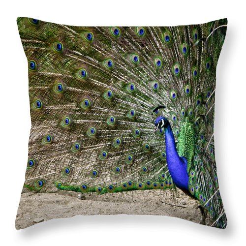 Peacock Throw Pillow featuring the photograph Peacock Profile by Her Arts Desire