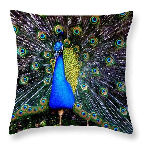 Photograph Throw Pillow featuring the photograph Peacock Wallpaper by Susan Duda