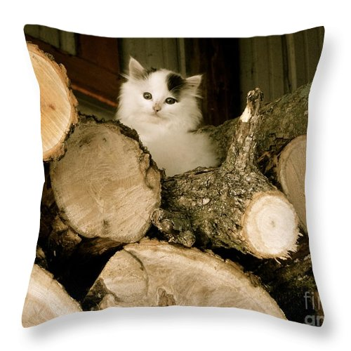 Wood Throw Pillow featuring the photograph Peak A Boo 1 by Jacqueline Athmann