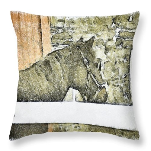 Horse Throw Pillow featuring the photograph Peanut by Trish Tritz