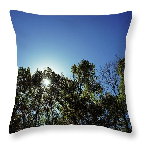 Ocala National Forest Throw Pillow featuring the photograph Peeking Through by Laurie Perry