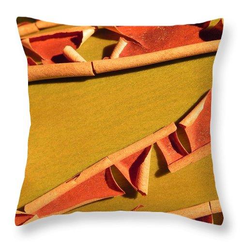 Arbutus Throw Pillow featuring the photograph Peeling Bark by Cheryl Hoyle