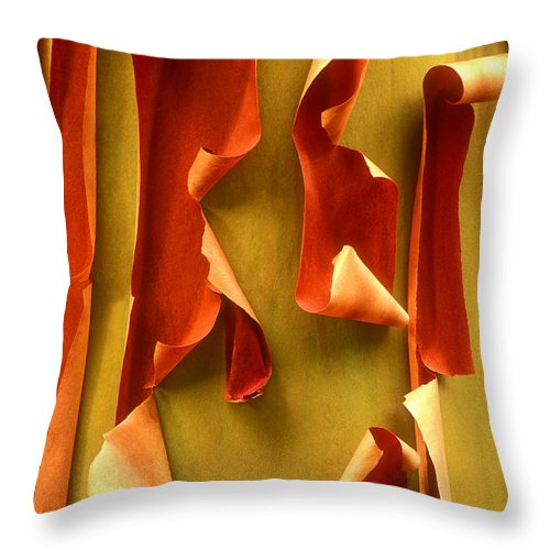 Pacific Madrone Throw Pillow featuring the photograph Peeling Bark Pacific Madrone Tree Washington by Dave Welling