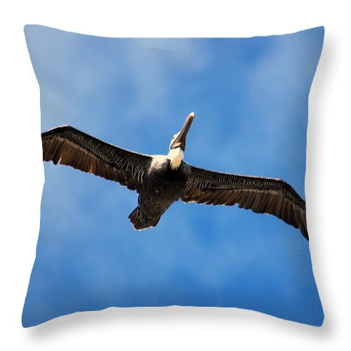 Pelican Throw Pillow featuring the photograph Pelican 002 by Larry Ward