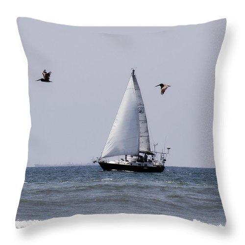 Pelicans Throw Pillow featuring the photograph Pelican Escort by Debby Richards
