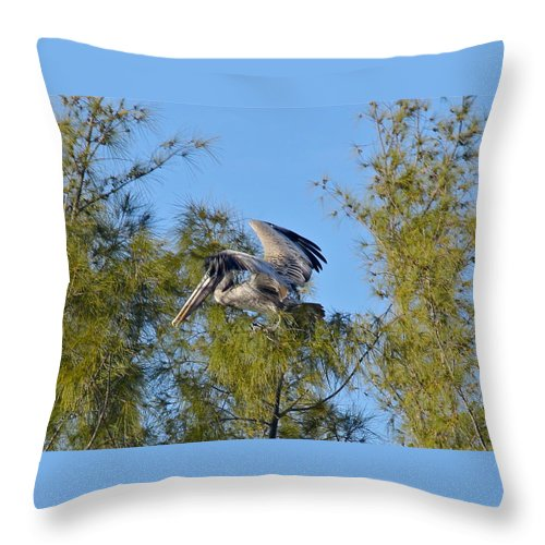 Pelican Throw Pillow featuring the photograph Pelican Landing by Denise Mazzocco
