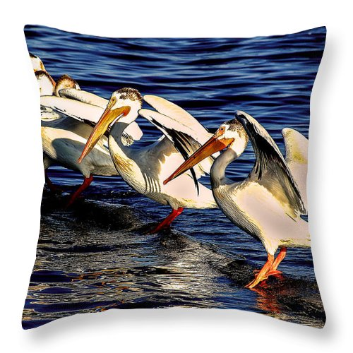 Nature Throw Pillow featuring the photograph Pelican Logrolling by Steven Reed