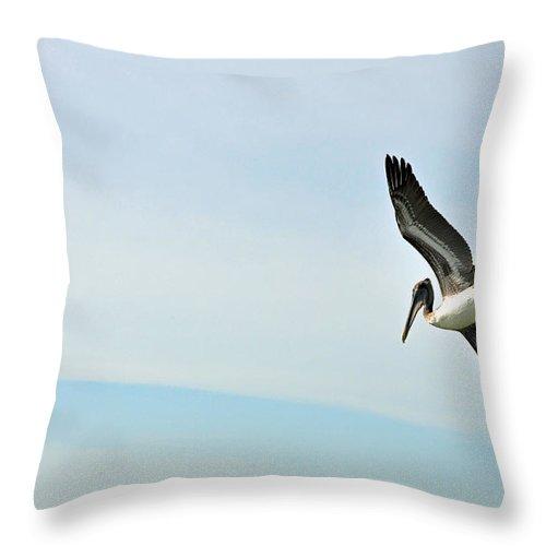 Pelican Throw Pillow featuring the photograph Pelican On Sanibel by Deborah Good