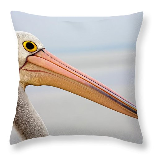 Pelican Throw Pillow featuring the photograph Pelican Profile by Mike Dawson