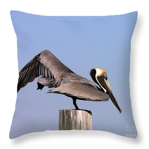 Pelican Throw Pillow featuring the photograph Pelican Stretch by Al Powell Photography USA