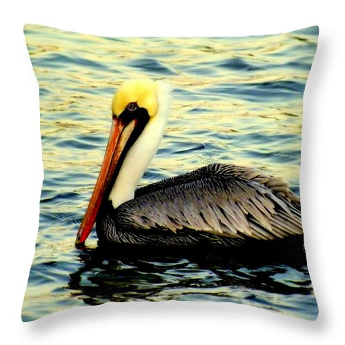 Pelicans Throw Pillow featuring the photograph Pelican Waters by Karen Wiles