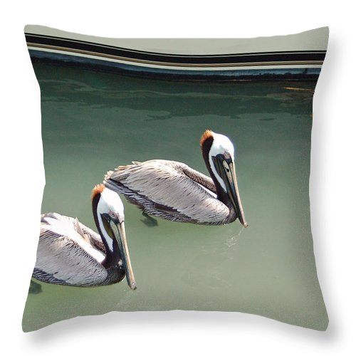 Brown Pelican Throw Pillow featuring the photograph Pelicans Partners by Suzanne Gaff