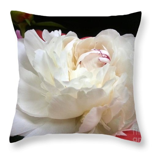 Peony Throw Pillow featuring the photograph Peony Addiction by Heather L Wright