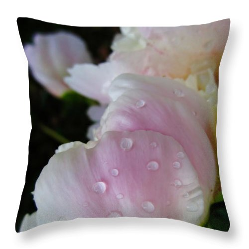 Peony Throw Pillow featuring the photograph Peony Blossom After A Rain by Cynthia Clark
