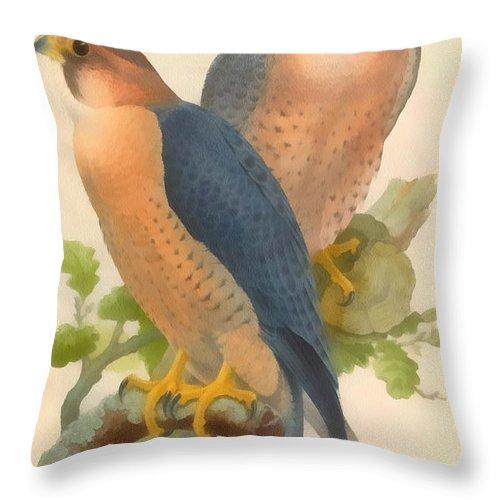 Peregrine Falcon Throw Pillow featuring the digital art Peregrine Falcon by John Gould