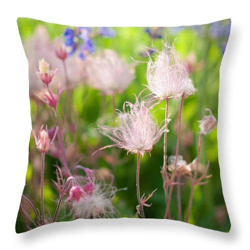 Garden Throw Pillow featuring the photograph Flowers With Pink Hair by Jazmin Corona