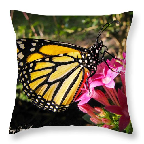 Monarch Throw Pillow featuring the photograph Perfect Penta by Lucy VanSwearingen