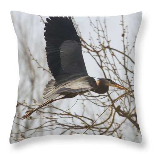 Ardea Throw Pillow featuring the photograph Perfect Stick by Jack R Perry