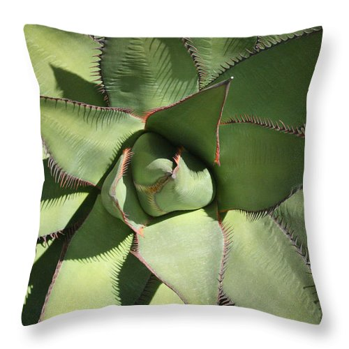 Perfect Symmetry Throw Pillow featuring the photograph Perfect Symmetry by Ellen Henneke