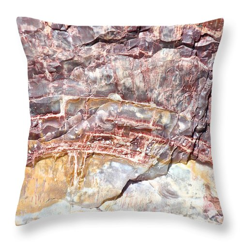 Outdoors Throw Pillow featuring the photograph Petrified Rings by Susan Herber