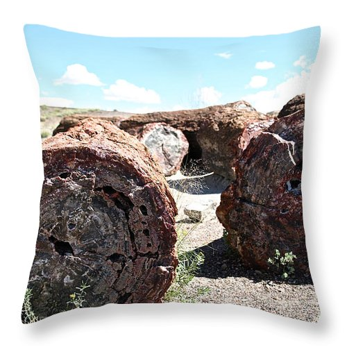 Outdoors Throw Pillow featuring the photograph Petrified Timber by Susan Herber