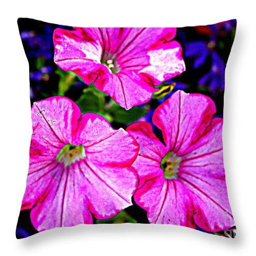 Petunia Rhapsody - Petunias - Florals - Nature - Pink Petunias Throw Pillow featuring the photograph Petunia Rhapsody by Dora Sofia Caputo Photographic Design and Fine Art