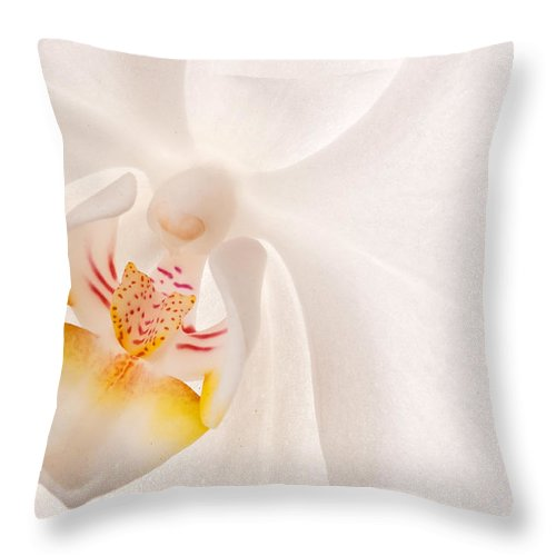 Orchid Throw Pillow featuring the photograph Phalaenopsis White Orchid by Bobbie Climer