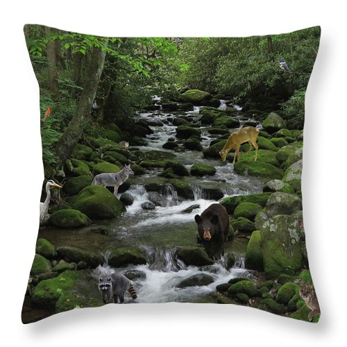 Stream Throw Pillow featuring the photograph Photographer's Dream by Golder Photography