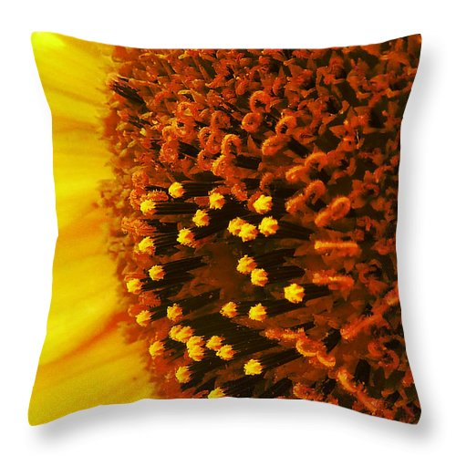 Yellow Throw Pillow featuring the photograph Photon Torpedoes Primed by Steve Taylor