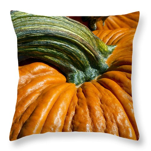 Punkin Time Throw Pillow featuring the photograph Pick Me by Gary Holmes