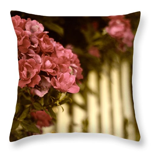 Roses Throw Pillow featuring the photograph The Golden Hour by Jessica Jenney