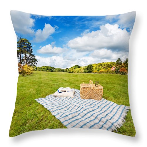 Picnic Blanket And Basket In Sunny Field Throw Pillow For Sale By Jo Ann Snover