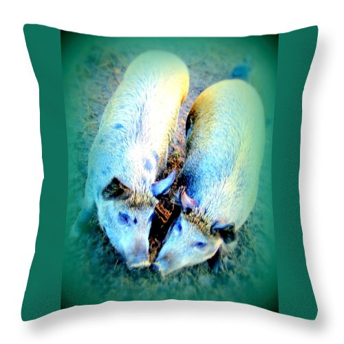 Pig Throw Pillow featuring the photograph Soon We Are Going To Have A Pig Party by Hilde Widerberg