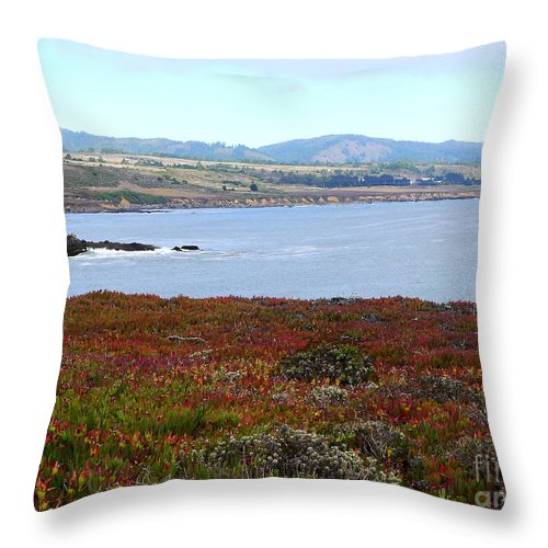 Glorious View Throw Pillow featuring the photograph Pigeon Point Bay by Christiane Schulze Art And Photography