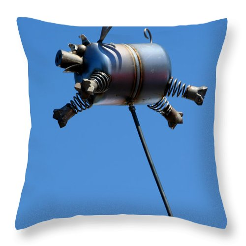 Humor Throw Pillow featuring the photograph Pigs Fly by Joe Kozlowski