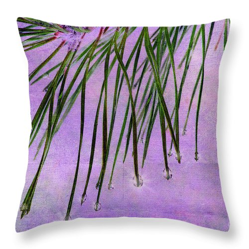 Pine Throw Pillow featuring the photograph Pine Drops by Judi Bagwell