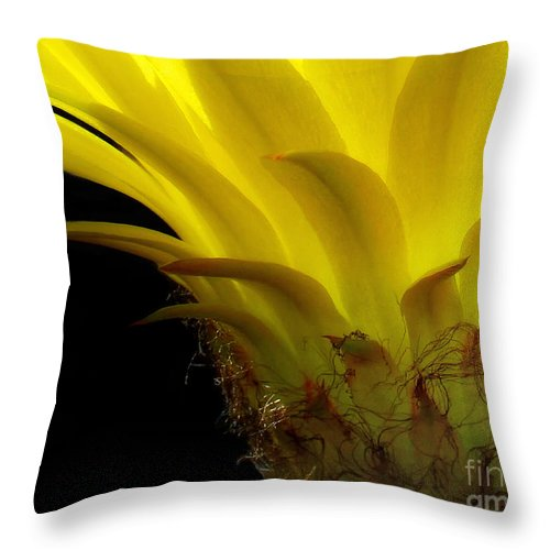 Cactus Throw Pillow featuring the photograph Cactus Flower by Mike Nellums