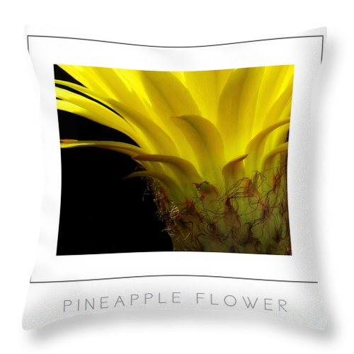 Throw Pillow featuring the photograph Pineapple Flower Poster by Mike Nellums