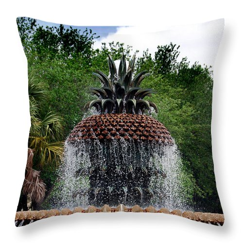 Park Throw Pillow featuring the photograph Pineapple Fountain by Skip Willits