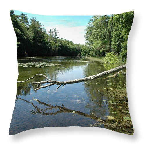 Canada Throw Pillow featuring the photograph Pinery Park- Canada by Dennis Rundlett