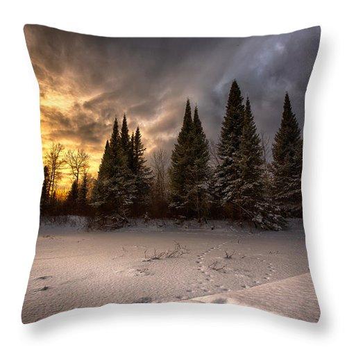 Bitter Throw Pillow featuring the photograph Pinewood River by Jakub Sisak