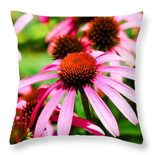 Pink Throw Pillow featuring the photograph Pink Beauty by Marty Gayler