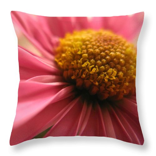 Floral Throw Pillow featuring the photograph Pink Flower by Aza Johnson