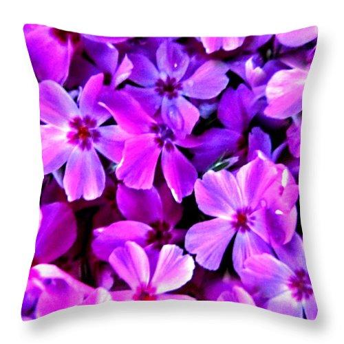 Artiste Danielle Parent Throw Pillow featuring the photograph Pink Flox Everywhere by Danielle Parent