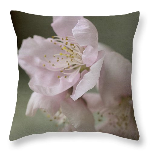 Pink Throw Pillow featuring the photograph Pink Is The Color Of Happiness by Linda Lees