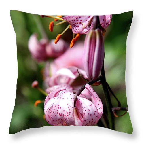 Pink Lilies Throw Pillow featuring the photograph Pink Lilies by Christiane Schulze Art And Photography